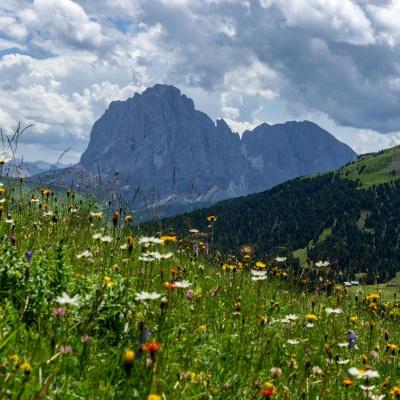 Seceda Seilbahnen AG in St. Ulrich in Göden in den Dolomiten in Südtirol