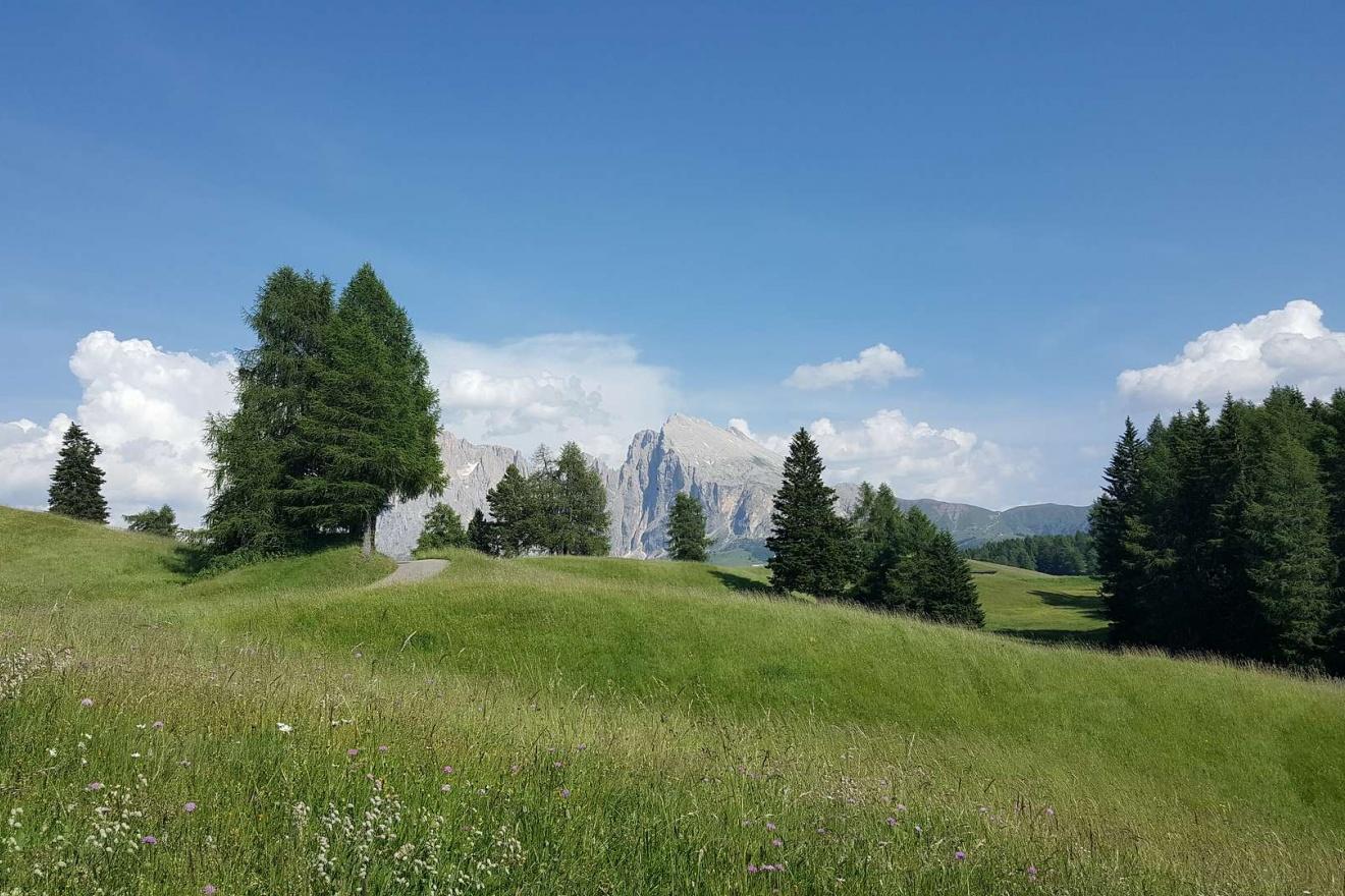 Garni Cittadella in Ortisei in Val Gardena